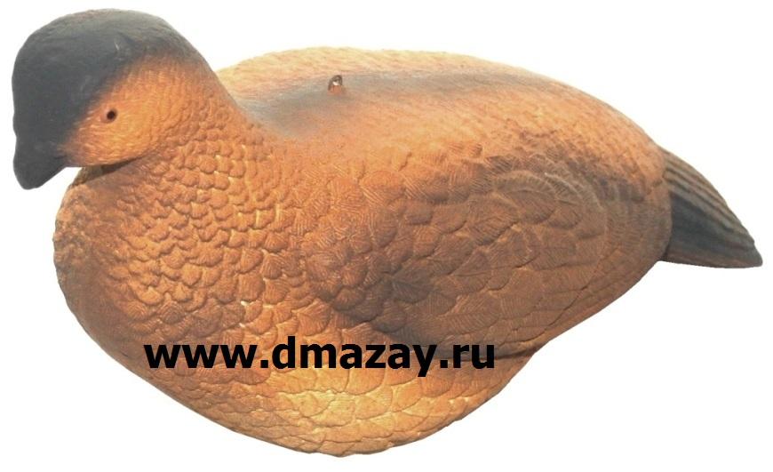 Чучело подсадное Филина Owl D732 1 - Чучела для